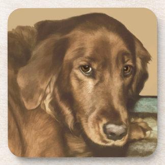 Brown observó el perro irlandés de oro posavasos