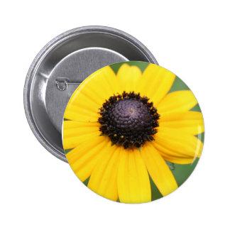 Brown observó los productos de Susan Pin Redondo 5 Cm