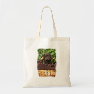 Brown one chocolate labrador retriever puppy in th canvas bags