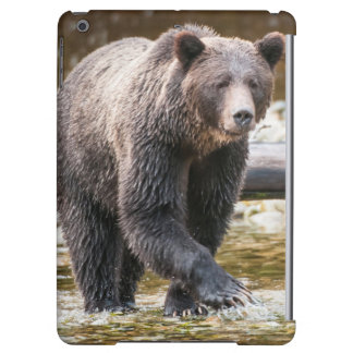 Brown Or Grizzly Bear (Ursus Arctos) Fishing Case For iPad Air
