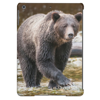 Brown Or Grizzly Bear (Ursus Arctos) Fishing iPad Air Case