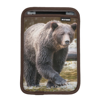 Brown Or Grizzly Bear (Ursus Arctos) Fishing Sleeve For iPad Mini