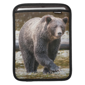 Brown Or Grizzly Bear (Ursus Arctos) Fishing Sleeve For iPads