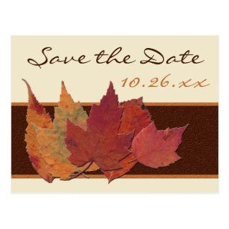 Brown Orange ivory Dried Leaves Save Date Postcard