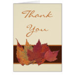 Brown Orange Ivory Dried Leaves Thank You Card Cards