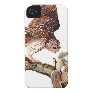 Brown Owl and Squirrel Case-Mate iPhone 4 Case