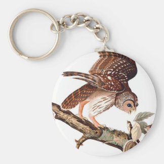 Brown Owl and Squirrel Keychain
