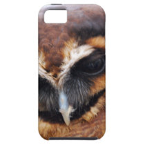 Brown Owl iPhone SE/5/5s Case