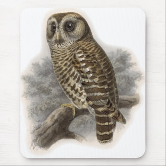 Brown Owl Mouse Pad