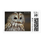 Brown Owl Postage