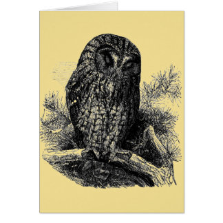 Brown Owl Sleeping Card
