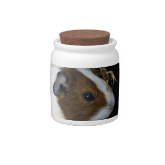 Brown_Patch_Guinea-Pig,_ Candy Dishes