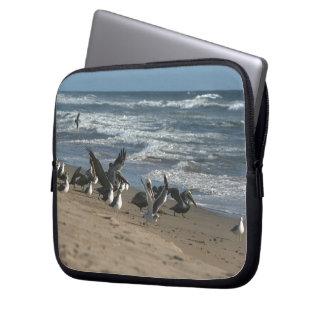 Brown Pelican Birds Wildlife Animals Computer Sleeve