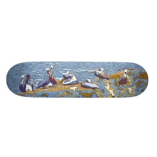 Brown Pelican Birds Wildlife Animals Photography Skateboard