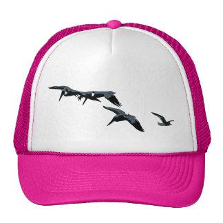 Brown Pelican Birds Wildlife Animals Photography Trucker Hat