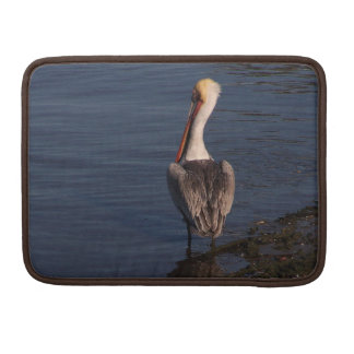 Brown Pelican Birds Wildlife Animals Sleeve For MacBook Pro