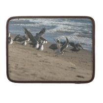 Brown Pelican Birds Wildlife Animals Sleeve For MacBooks