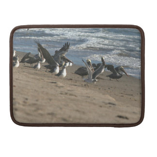 Brown Pelican Birds Wildlife Animals Sleeve For MacBooks