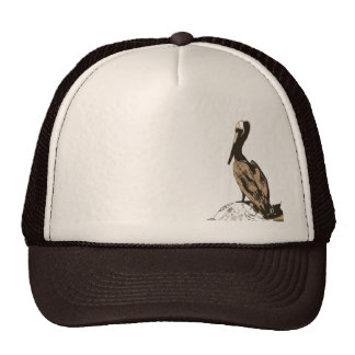 Brown Pelican Birds Wildlife Animals Trucker Hat