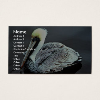 Brown Pelican Business Card