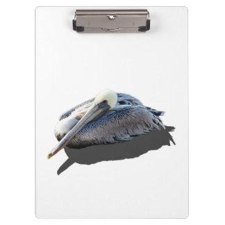 Brown Pelican clipboard