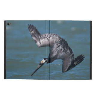 Brown Pelican diving in flight Rockport Texas Powis iPad Air 2 Case