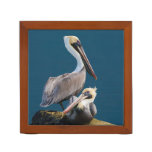 Brown Pelican Duo, Reversible Desk Organizers