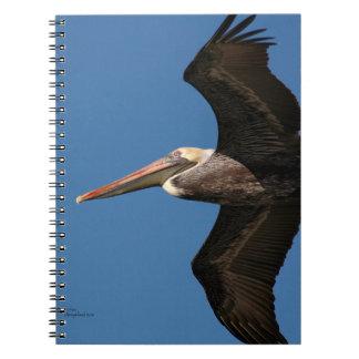 Brown Pelican Flying Notebook