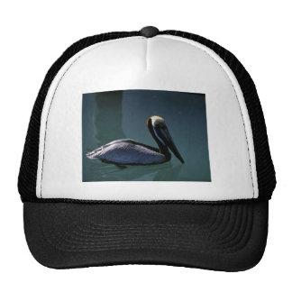 Brown Pelican Trucker Hat