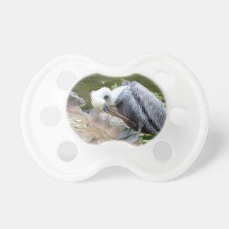 brown pelican head bowed bird c pacifier