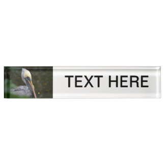 brown pelican head view facing right bird desk name plate