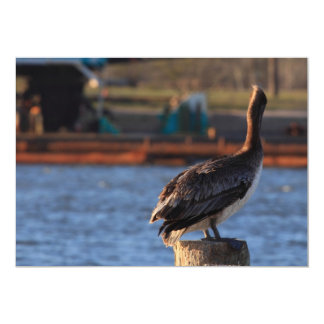 Brown Pelican Invitations