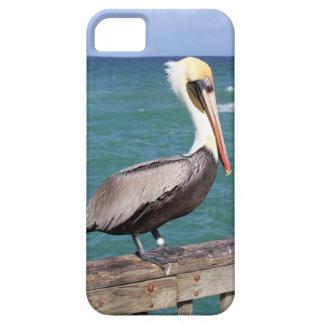 Brown Pelican iPhone SE/5/5s Case
