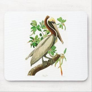 Brown Pelican John James Audubon Birds of America Mouse Pad