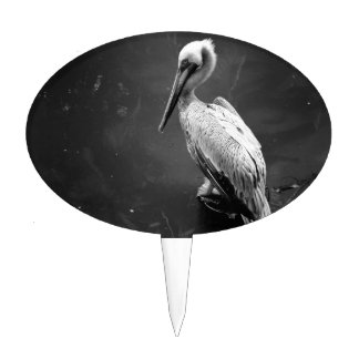 brown pelican near water fish swimming bw cake topper