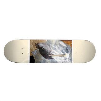 Brown Pelican Portrait Skateboard