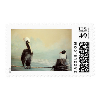 Brown Pelican & Seagull Postage