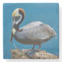 Brown Pelican Stone Coaster