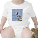 Brown Pelican Tee Shirt