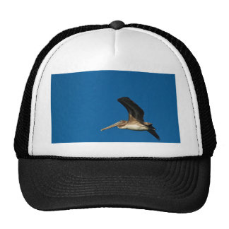 Brown Pelican Trucker Hat