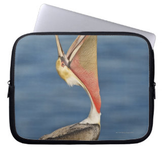 Brown Pelican with mouth open Computer Sleeve