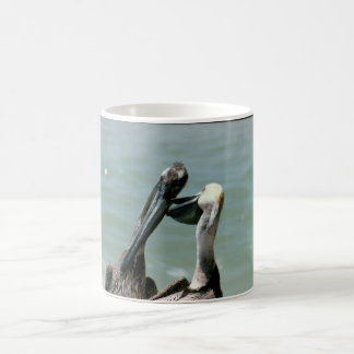 Brown Pelicans Preening Coffee Mug