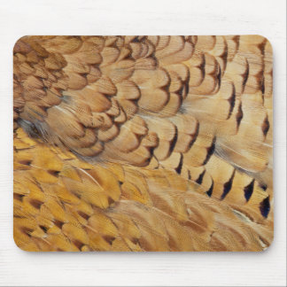 Brown Pheasant Feather Abstract Mouse Pad
