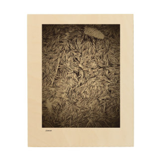 brown pine needles on wood wood print