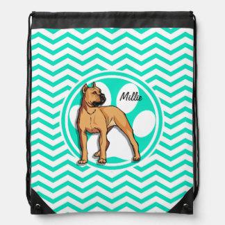 Brown Pitbull; Aqua Green Chevron Cinch Bags