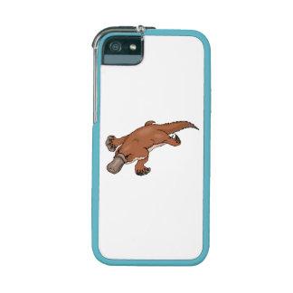 Brown Platypus