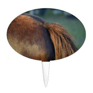 Brown pony hindquarters and tail cake topper
