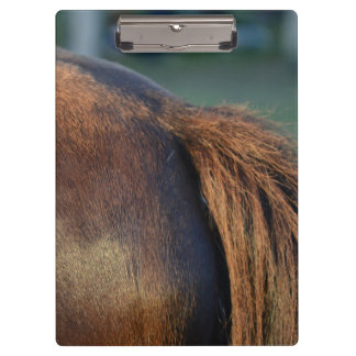 Brown pony hindquarters and tail clipboards
