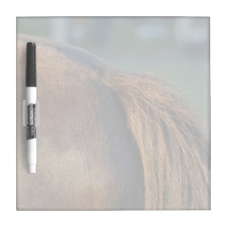 Brown pony hindquarters and tail dry erase whiteboard