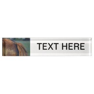 Brown pony hindquarters and tail name plate